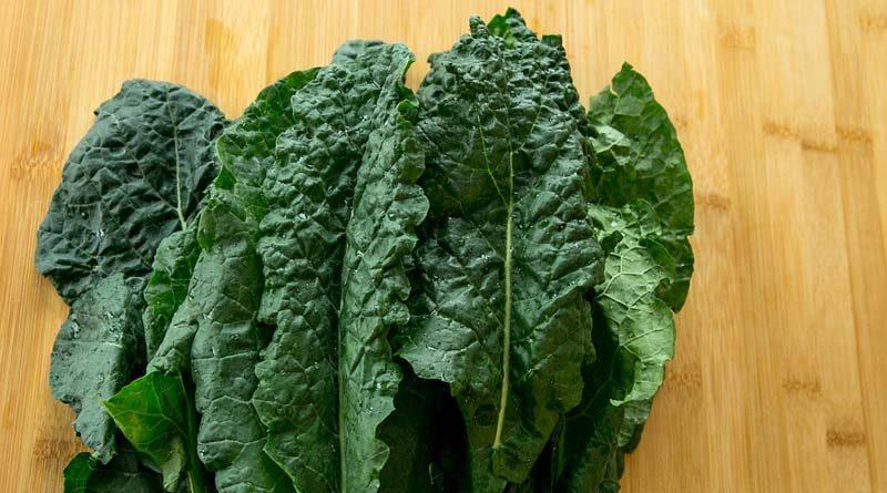 Kale photo